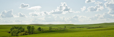 Panorama of the Flint Hills