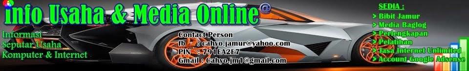 Info Usaha Dan Media Online