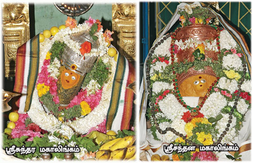 Sathuragiri srisundara magalingam manthiralayam சதுரகிரி ஸ்ரீ மகாலிங்கம் மந்திராலயம்
