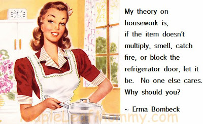 Housework. No one else cares. Why should you?