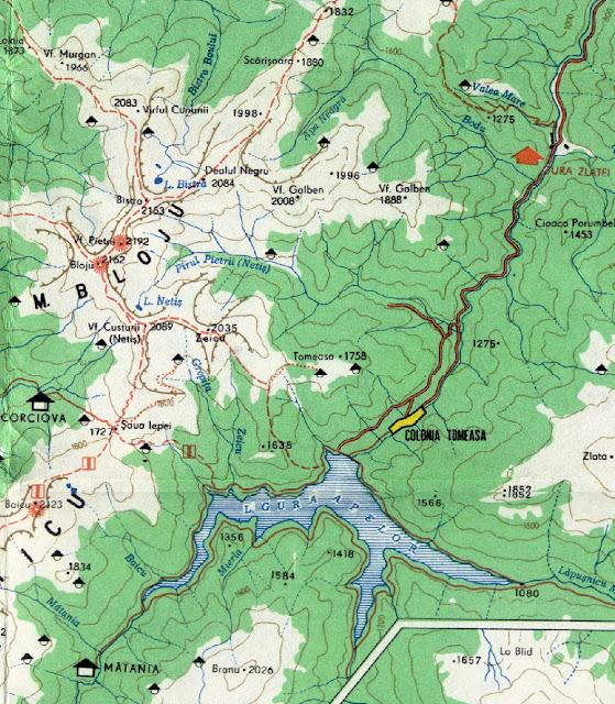 Intretaierea celor 3 masive muntoase - muntii Godeanu - muntii Tarcu si rezervatia naturala Retezat  chiat in zona lacului Gura Apelor - mai sus pe harta in nord vedeti si lacul Bistra - locul de unde izvoreste raul Bistra - un important afluent al raului Timis