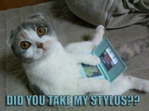 Did You Take My Stylus