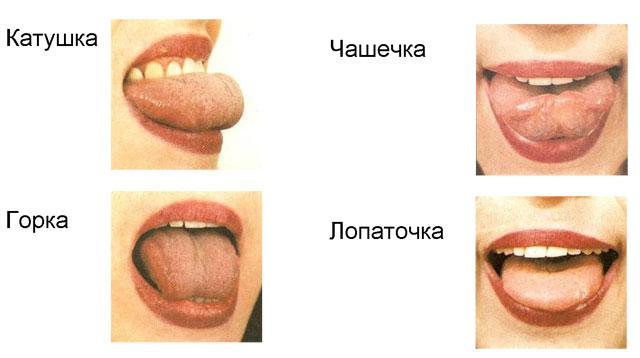 http://1.bp.blogspot.com/-q6im-vLceAQ/Tu4_bAjebfI/AAAAAAAAAHo/TCnQus9PsRw/s1600/25D025B025D1258025D1258225D1258325D025BF25D12580425D1258825D12582.jpg