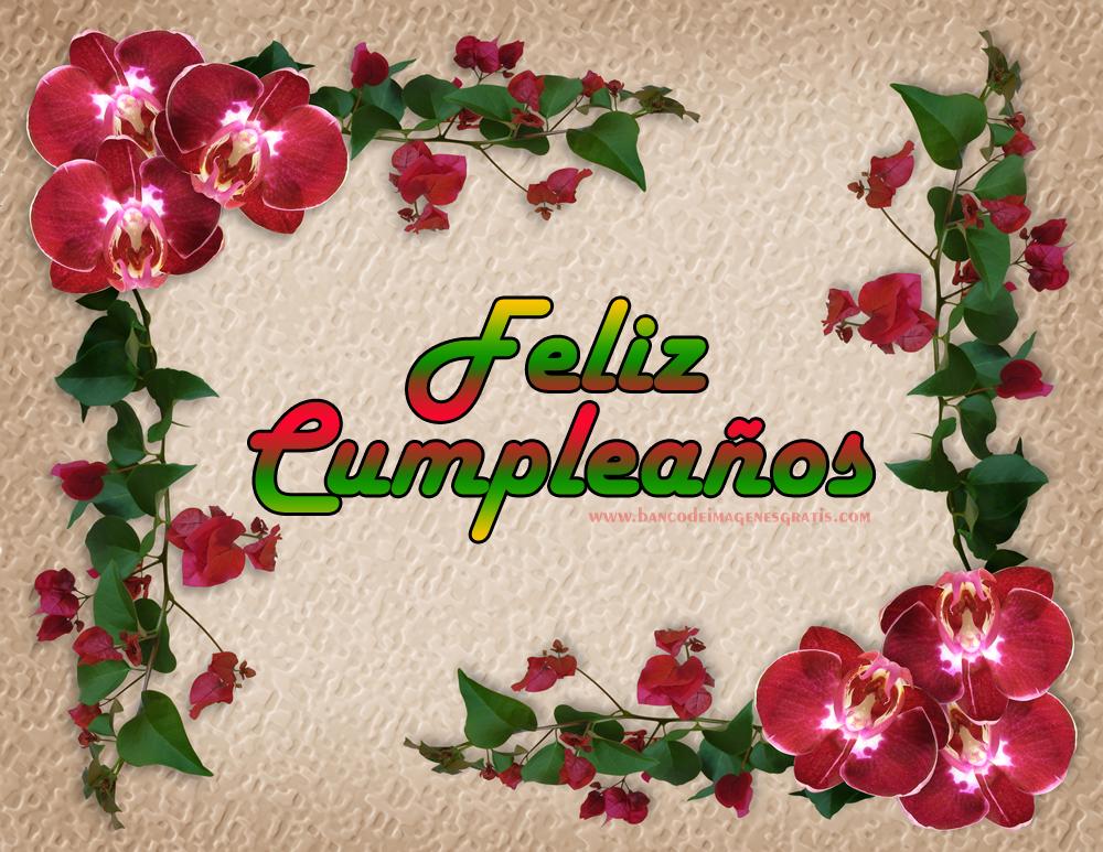 Imagenes de cumpleaños para Tarjetas Mensajes y Frases  - Descargar Imagenes De Feliz Cumpleaños Amiga