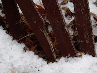 snowy fence cambridge massachusetts copyright kerry dexter