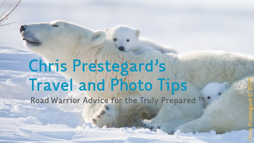 Chris Prestegard's Wildlife Photography and Travel Tips. Copyrighted 2012.  ALL RIGHTS RESERVED