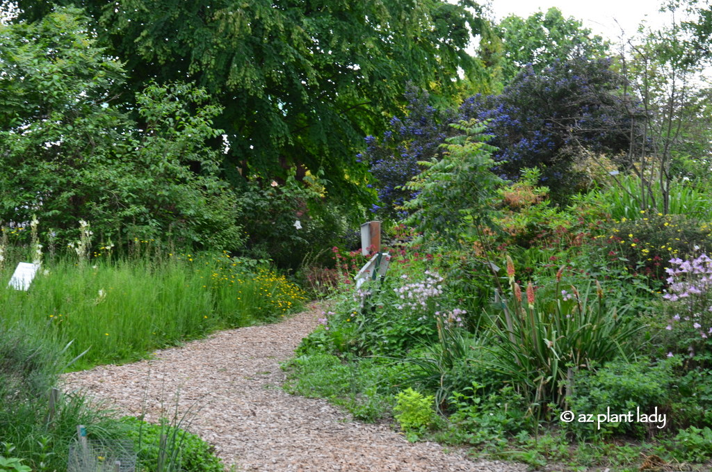 The Discovery Garden