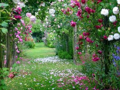 пролетна пътека