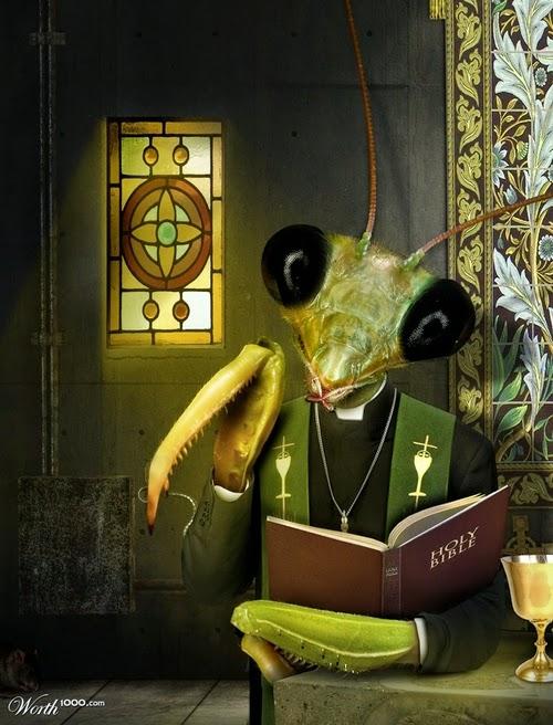 11-Praying-Mantis-Designer-&-Illustrator-Marcus-Aurelius-www-designstack-co
