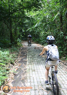 Kid also Join cycling in Bamboo Forest - Bali Countryside Cycling Tour Tracks