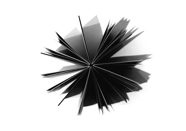 laurence ravoux graphiste