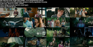 Download Torrent Welcome to the Jungle Legendado RMVB + AVI DVDRip