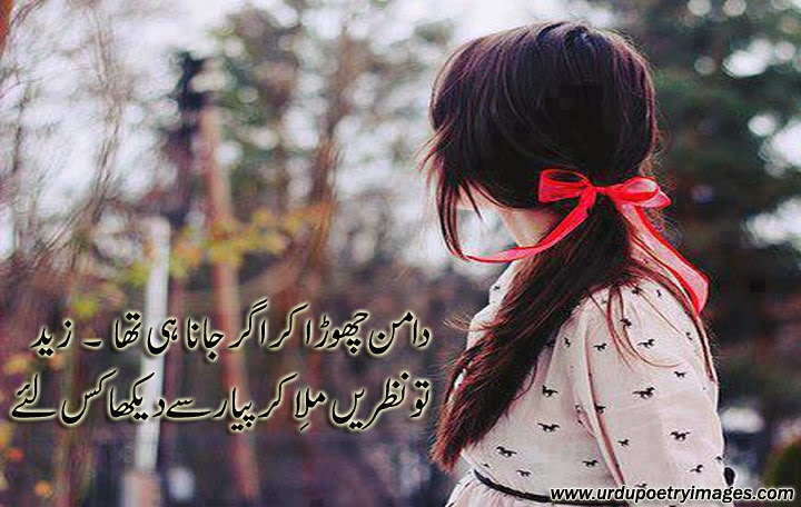 latest urdu shayari