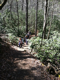 hiking Chattooga Trail