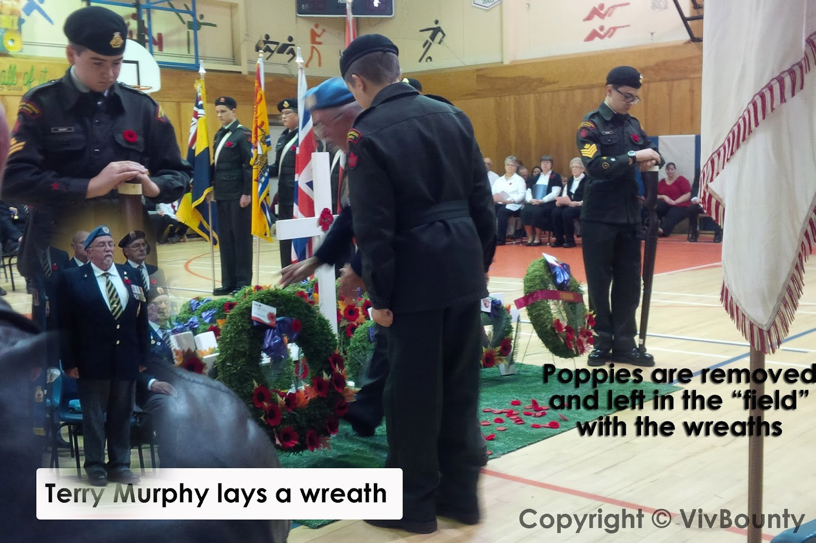 Terry Murphy, veteran lays a wreath, VivBounty