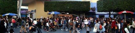 東京ディズニーランドの混雑予想や混雑回避を考える際に気をつけたいい事