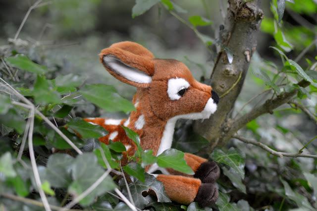 Autumn Woodland Walk deer