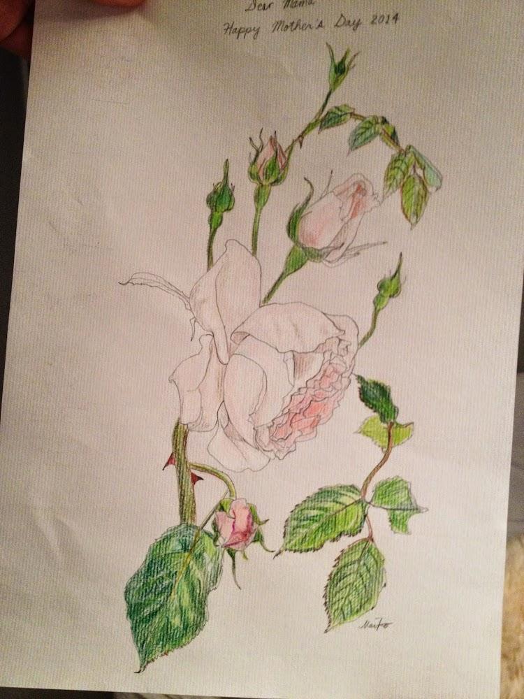 roses by maiko horita