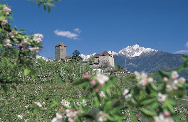Schloss Tirol zur Blütezeit...