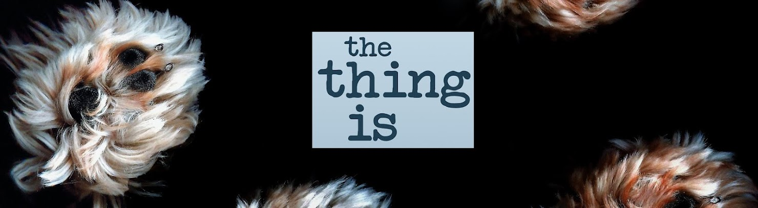 The Thing Is (The Novel)