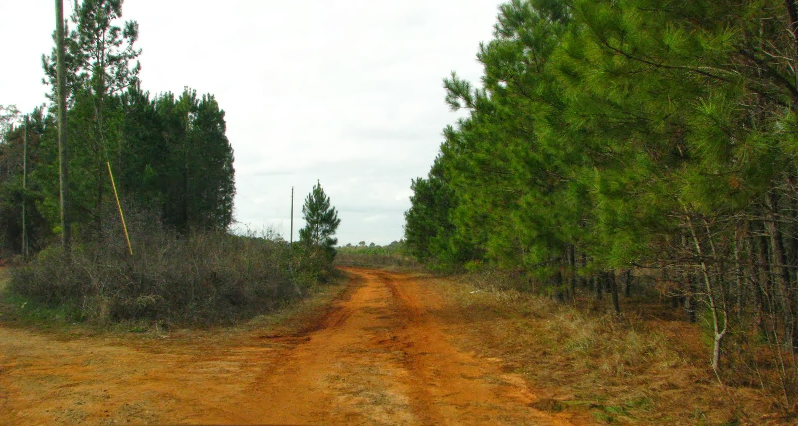 Red Clay Roads, Rimini, SC