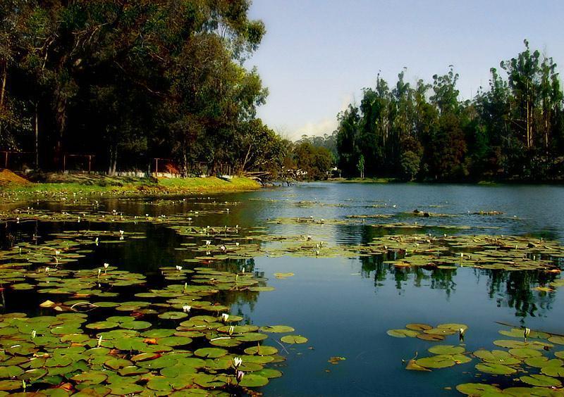 Lake Veli Trivandrum Kerala