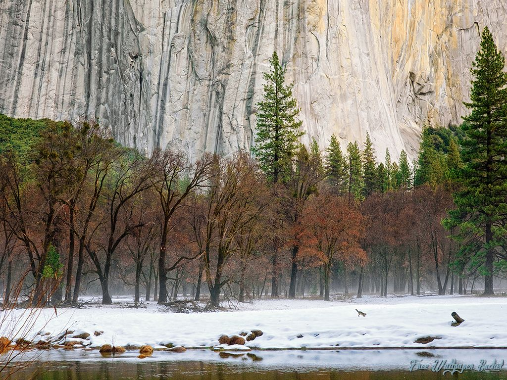 Best Beutiful Natural  Nature Backgrounds For Computers