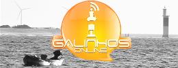 GALINHOS ONLINE