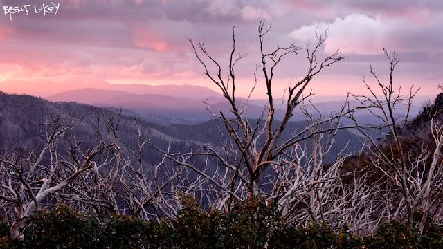 'Mount Saint Bernard, Victoria.' Brent Lukey 2012.