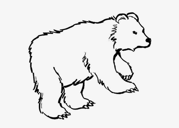 Free coloring pages of grizzly bear