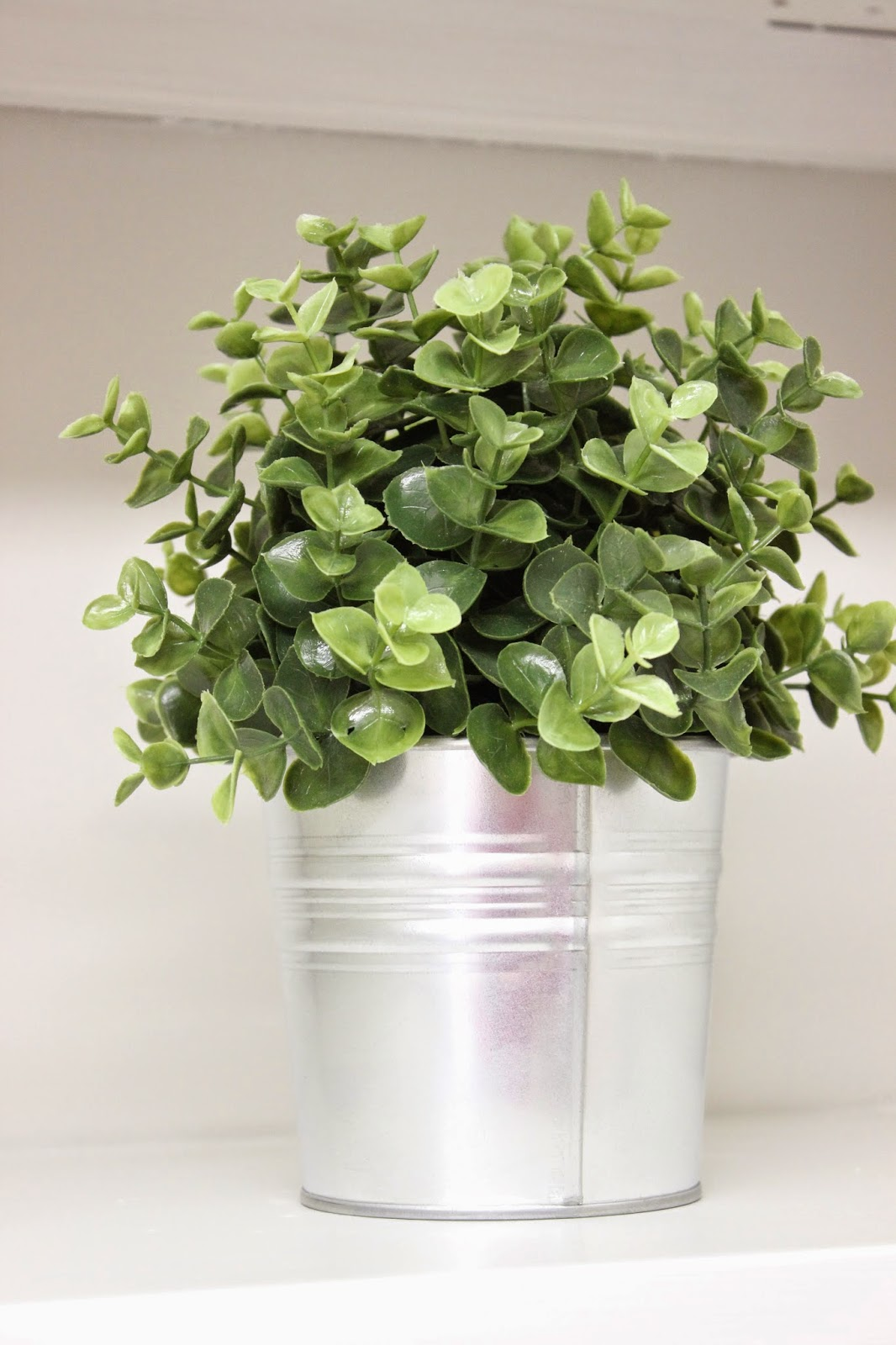 is grows resized been picture closet full to cannagraphic sized image the view grow soil has international original this indoor showthread plant bar ic click