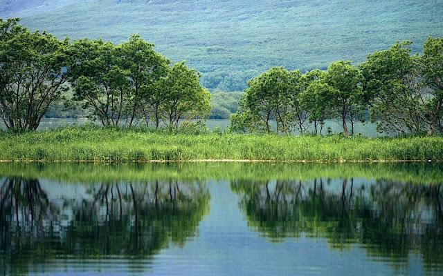 Nature View Kamchatka in Peninsula