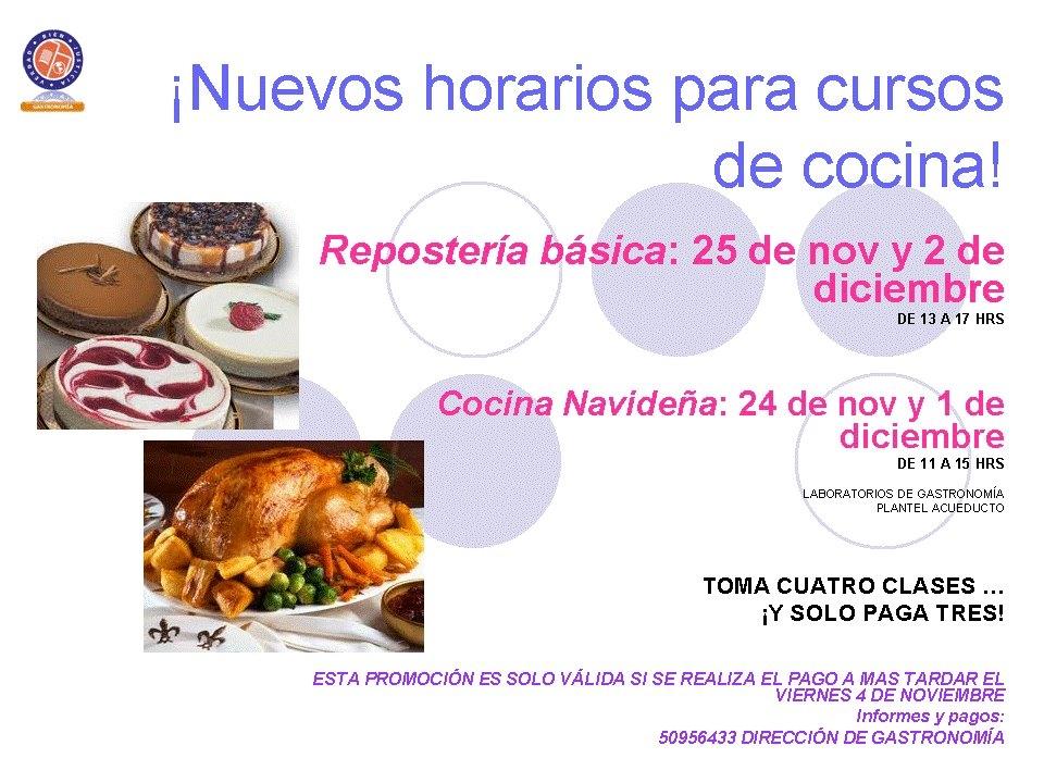 Festivales gastron micos cursos de cocina navide a for Cursos de cocina en castellon