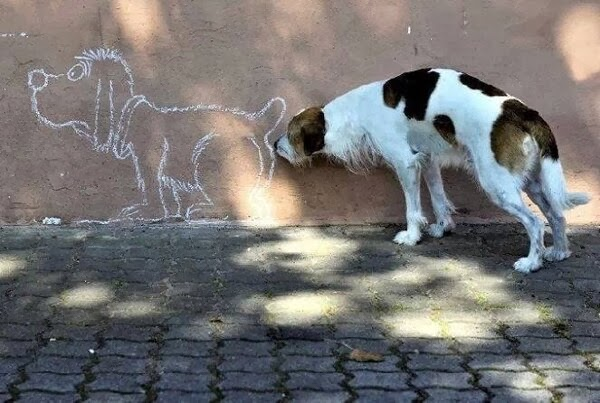 Dog Sniffing Cartoon Dogs Butt Funny Pic
