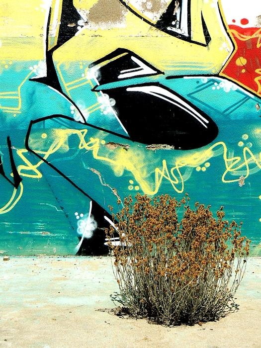 fotografia_graffiti_arte_urbana_street_art