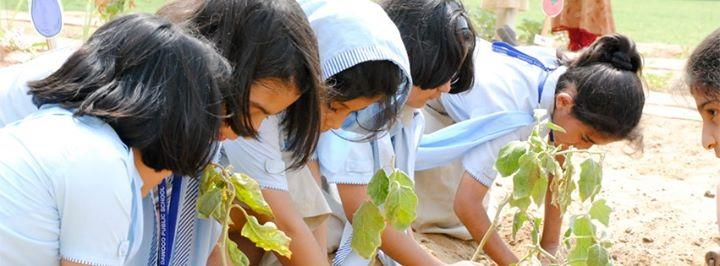 Planting at Dawood Public School