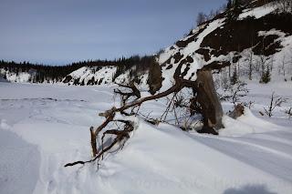 Река Сула. Ненецкий автономный округ. Река Сула - левый приток Печоры. Ненецкий автономный округ.
