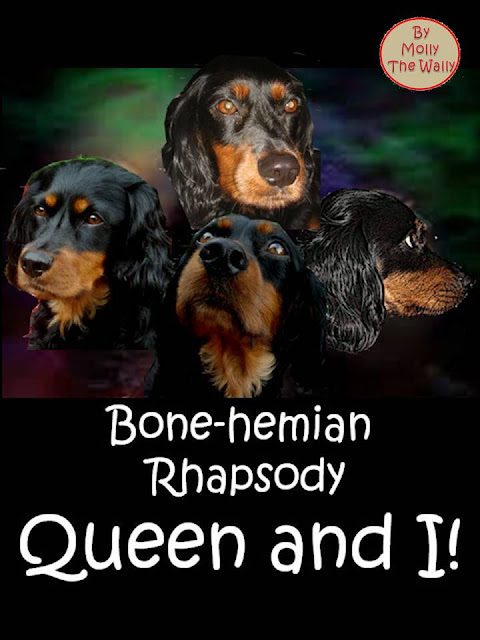 Bohemian Rhapsody, Queen.album cover by Molly The Wally