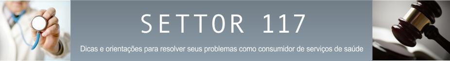 Settor 117
