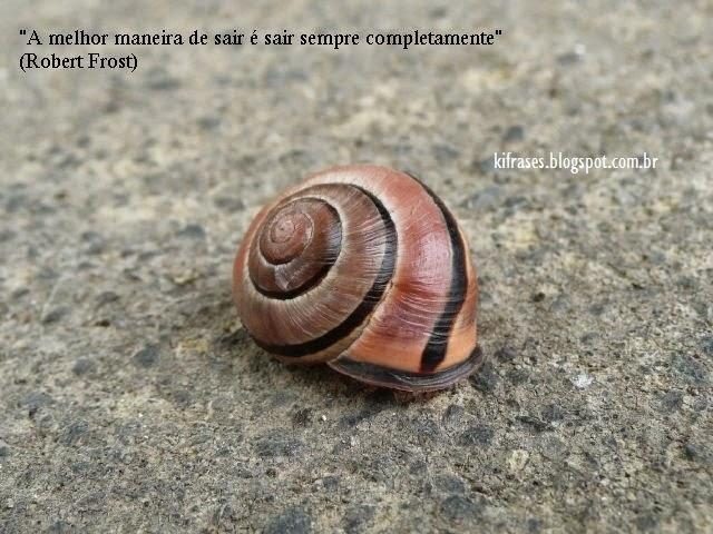 frase de Robert Frost