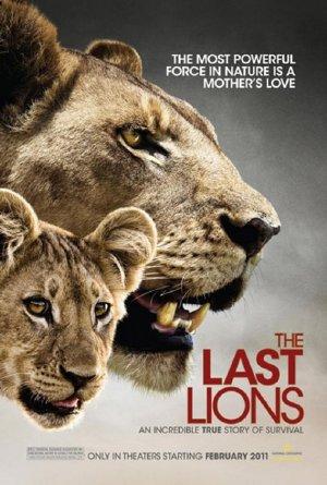 Bầy Sư Tử Cuối Cùng - The Last Lions (2011) Poster