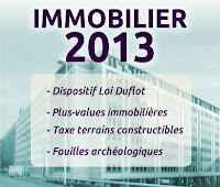 immobilier 2013