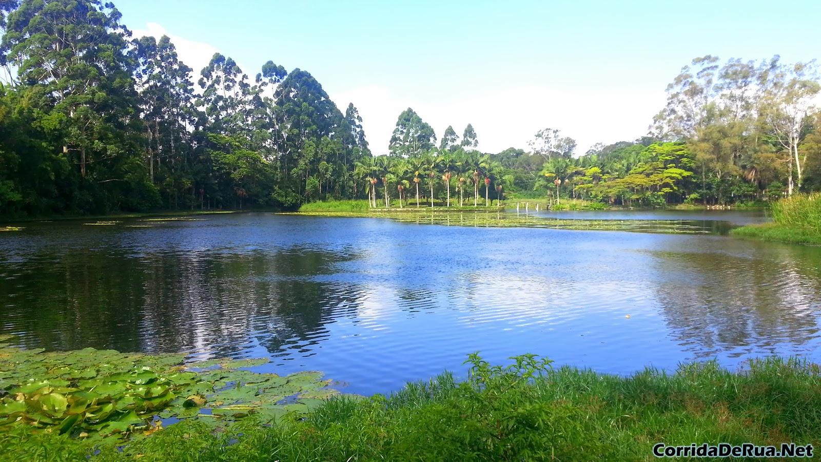 Corrida no Parque Jacques Custeau - Região de Interlagos - São Paulo