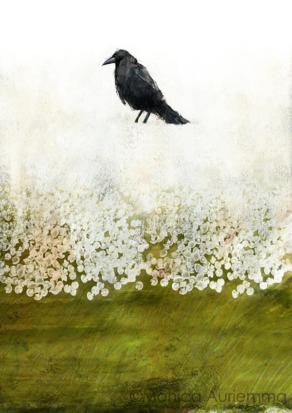 the crow. monicauriemma