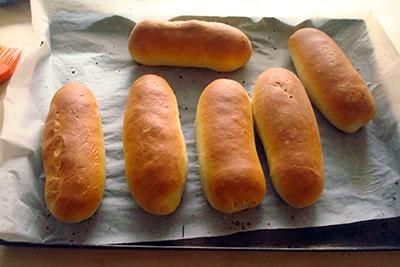 Panini per hot dog 19