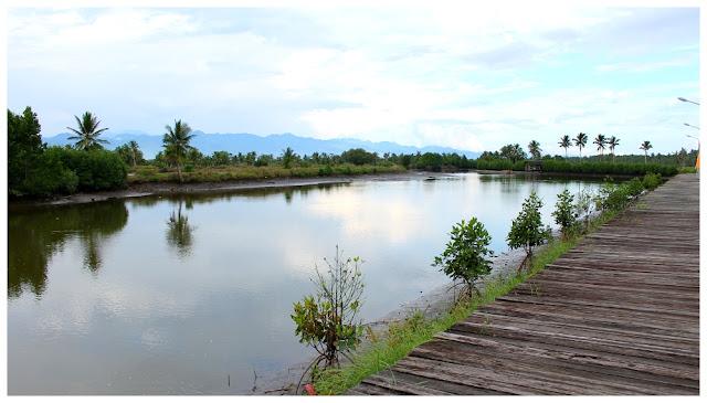 Punong restaurant in tagum city for Koi pond quezon city