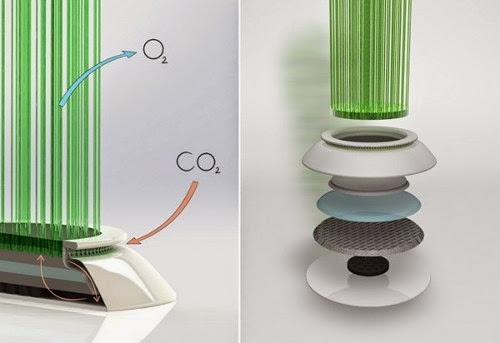 Bentgrass Air Filter Concept