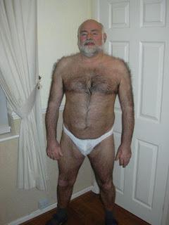 gay silvermen  - polar bears