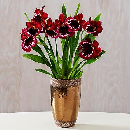 valentine day flowers pictures and price