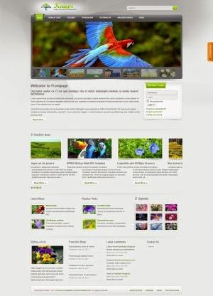 Share template ZT Kaupi - Joomla 1.5-1.7
